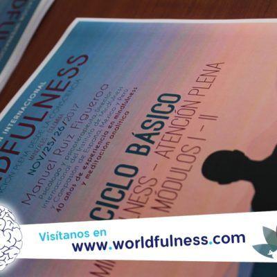 curso-mindfulness-worldfulness-manizales-colombia-meditacion-atencion-plena-crecimiento-personal-colombia7